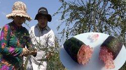 Chuyện lạ: Trái chanh dài như ngón tay, bên trong có hàng trăm...trứng cá tầm