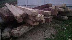 Nghệ An: 10m3 gỗ rừng phòng hộ bị chặt, kiểm lâm không nắm rõ?