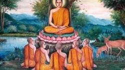 Tại sao đa số tu sĩ Phật giáo Việt Nam đều lấy họ Thích?