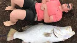 Cá chẽm khổng lồ dài 1,4m nặng 60kg, to như người lớn
