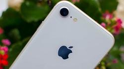 Có hơn 7 triệu đồng, có nên mua iPhone 8 mới 99% chơi Tết?
