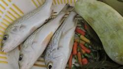 """Cá sạo là cá gì mà có tiếng """"ngon đẳng cấp"""" của Việt Nam"""