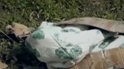 Vụ án xác cô gái bọc trong chăn bông: Phá án nhờ cộng đồng mạng