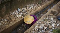 Nơi ra rãnh thoát nước cũng tìm được đá quý, bán hồng ngọc ngoài chợ như rau