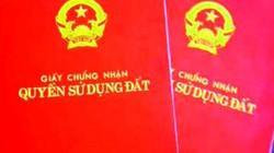 """Xuất hiện """"giả mạo"""" sổ đỏ, Chủ tịch Bình Định yêu cầu triệt phá đường dây!"""