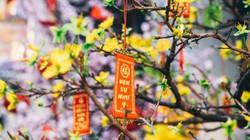 Dịp năm mới Tết Canh Tý 2020, có cần tuyệt đối kiêng kỵ điều gì?
