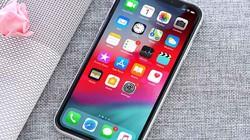 Những chiếc iPhone mới 99% giá từ 2,35 triệu đồng không được bỏ qua