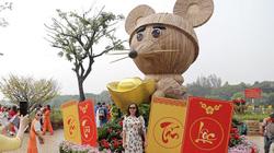 """Say đắm ngắm hình ảnh đậm chất làng quê tràn về """"phố nhà giàu"""" ở Sài Gòn"""