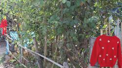 Ngôi làng nhà nào cũng treo áo đỏ ở cổng và sự thật câu chuyện đáng sợ phía sau