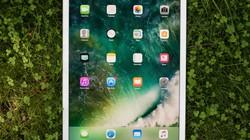 """Cựu nhân viên thiết kế iPhone và iPad bị Apple kiện vì """"ăn cắp"""" chất xám"""