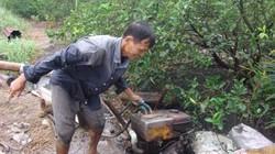 Nông dân trồng chanh Long An vừa ăn Tết, vừa chống mặn