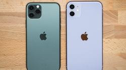 iPhone 11 chiếm tới 69% doanh số iPhone quý 4 tại Mỹ