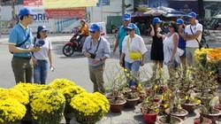 Nở rộ tour du lịch hành hương đất Phật, ngắm hoa xuân trong dịp Tết