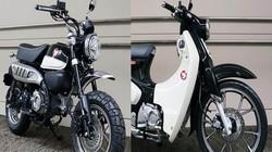 HOT: Honda Super Cub C125 và Monkey 125 ABS thêm tùy chọn màu đen cực chất