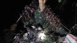 Xuyên đêm, trèo núi cùng anh em A Hù săn chuột rừng béo mẫm