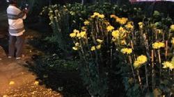 Khánh Hòa: Trước giờ giao thừa, đập bể chậu, phá hoa tan nát