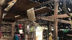Lạng Sơn: Dông lốc, mưa đá gây thiệt hại hơn 20 tỷ đồng
