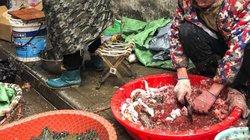 Virus Corona: Số người chết ở Trung Quốc tăng lên 80, 2.500 người nhiễm bệnh