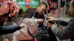 Trung Quốc đã phát hiện nơi xuất phát dịch corona tại Vũ Hán