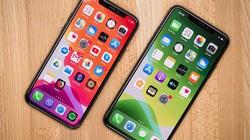 iPhone quá đắt hàng, Apple tăng sản lượng 10%