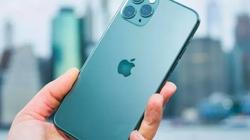 iPhone 12 sẽ giống iPhone 11 nhưng có màu mới