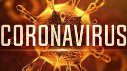 Cách phòng tránh dịch bệnh từ chủng mới của virus Corona