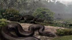 Kinh ngạc trước 7 loài quái vật lớn nhất mọi thời đại