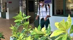 Bà Rịa – Vũng Tàu cho học sinh, sinh viên nghỉ học để phòng chống dịch bệnh nCoV
