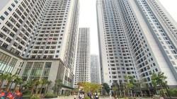 Thị trường bất động sản hiếm dự án mở bán quý đầu năm 2020