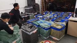 Thu giữ 120 nghìn khẩu trang đang tập kết ở Hà Nội để tuồn lên biên giới