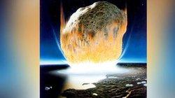 Phát hiện bất ngờ về sự sống sau khi thiên thạch gây tuyệt diệt cách đây 66 triệu năm