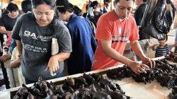 Khu chợ đáng sợ ở Indonesia và nguy cơ lây lan dịch Corona