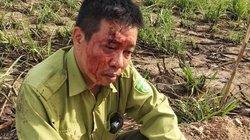 Đắk Lắk: Tạm giữ nhóm lâm tặc hành hung kiểm lâm Vườn quốc gia