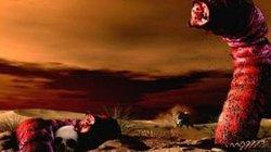 """Bí ẩn về loại """"sâu"""" tử thần ở vùng sa mạc Mông Cổ"""