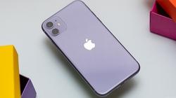 Quảng cáo iPhone 11 chụp ảnh ban đêm đẹp mê ly, lu mờ tất cả