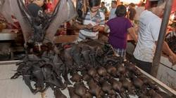 """Trước khi dừng bán rắn, dơi vì sợ Corona, khu chợ này từng gây """"ám ảnh"""" kinh hoàng"""