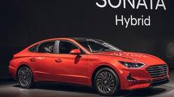 Hyundai trình làng Sonata Hybrid thế hệ mới tại Mỹ, Toyota Camry hybrid 'đợi đấy'
