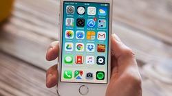 Những thông tin nóng nhất về iPhone SE thế hệ tiếp theo