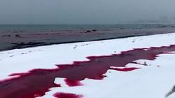 Người dân sốc nặng khi nước biển biến thành màu máu bí ẩn