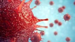 Brazil: Phát hiện virus lạ không giống với bất cứ virus nào trên Trái đất