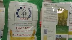 Loạn thị trường gạo ST24, ST25