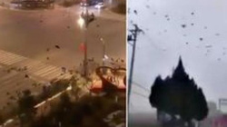 Tâm dịch corona: Vũ Hán bỗng dưng xuất hiện hàng ngàn quạ đen bay trên trời
