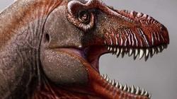 """Phát hiện về khủng long """"Thần chết"""", tiền bối của khủng long bạo chúa"""