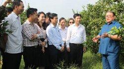 Hội Nông dân tỉnh Thanh Hóa:  Đổi mới hoạt động tư vấn, hỗ trợ nông dân