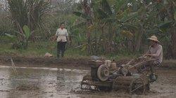 Đề phòng dịch corona, nông dân Quốc Oai khẩn trương xuống đồng