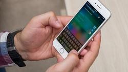 Không đợi hết dịch, Apple sẽ chuyển nhà máy sản xuất iPhone sang Việt Nam?
