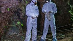 Dịch corona: Phát hiện nơi người dân miễn nhiễm với virus corona