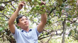 """Rà soát hội viên """"ảo"""", nâng chất phong trào nông dân"""