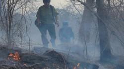 Đám cháy bùng phát, toả mù trên núi Tà Cú