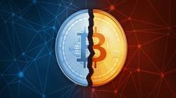 Lừa đảo Bitcoin và tiền điện tử bùng nổ, hơn 4 tỷ đô la bị bốc hơi